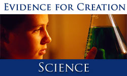 The Best Creation Science Updates Of 2012 Earth Sciences