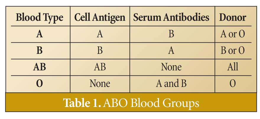 Blood types and human origins