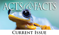 Current issue of Acts & Facts