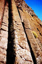 Vertical columns 40' high at Giant's Causeway in Ireland.